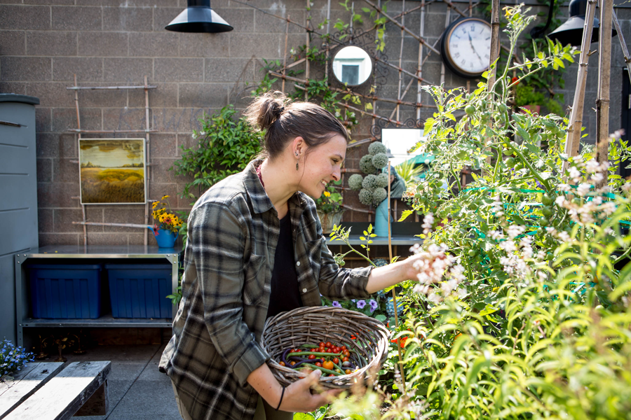 Join us as an Intern for the Pike Market Secret Garden! - Pike Place